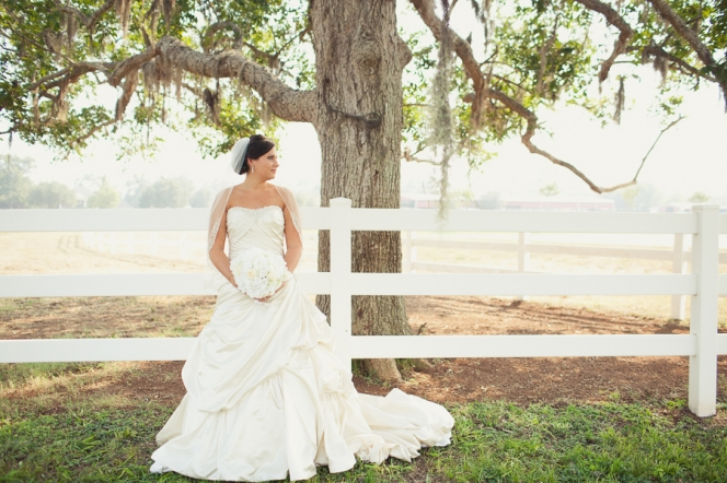 Briscoe Manor Bridals01