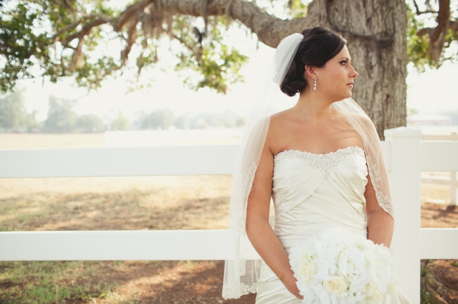 Briscoe Manor Bridals02